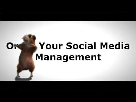 Social media management service for busy small businesses.
