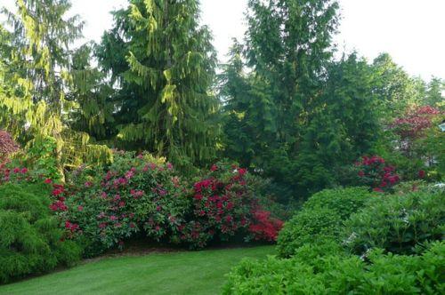 Origineller Sichtschutz im Garten landschaft grünfläche blüten ruhig