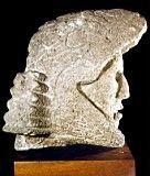Cabeza de caballero-águila. Cultura Azteca (México) - Obra - ARTEHISTORIA V2