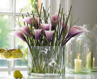 Dramatic, contemporary and very stylish, our calla lilies are in dramatic Patrician purple; the latest shade from specialist Dutch growers. A real statement piece and a favourite with our lovely customers!