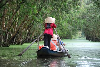 Tra Su Cajuput Forest, Chau Doc, An Giang. These photos are in flooding season of mekong delta.