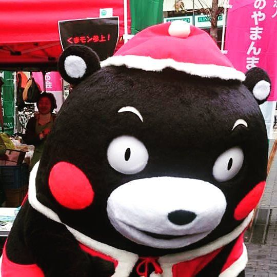 #kumamon#kumamonthailand#kumamonland#kumamoto#mascot#JAPAN#kwaii#cute#happy#bear#คมะมง#santa#christmas by aum_nitinun