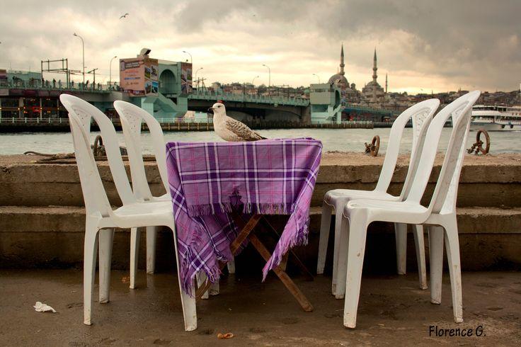 Pont Galata, #Istanbul / Reportage Photo / 4ème année