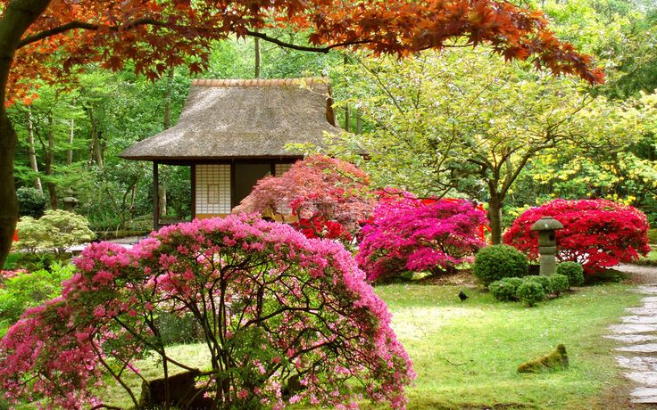 Jard n japon s rboles casa paisaje flores wallpaper for Arboles jardin japones