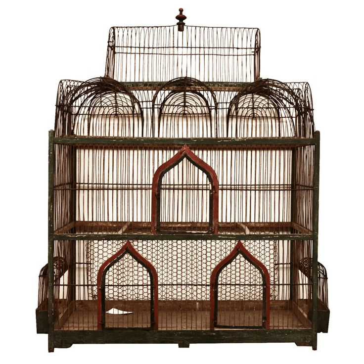 137 best bird cages images on Pinterest
