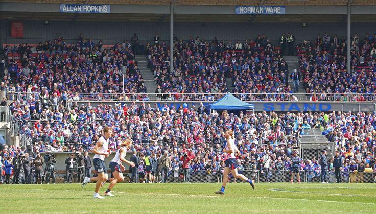 Western Bulldogs AFL Grand Final Open Training