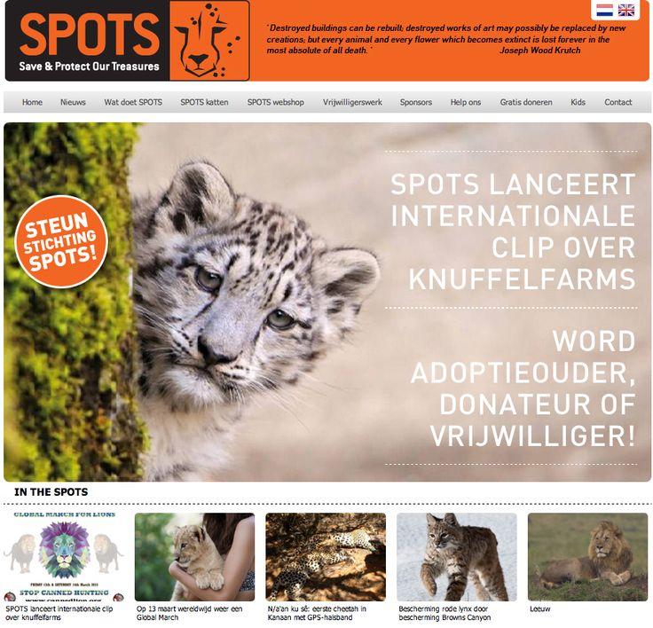 Op onze website www.stichtingspot... kun je terecht voor allerlei informatie over ons werk, updates en informatie over de Big Cats, hoe je ons kunt steunen en nog heel veel meer! Neem dus vooral een kijkje!