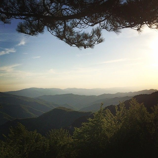 On the way to #Florence from Cesena. on the top of Passo Del Muraglione, Italy.