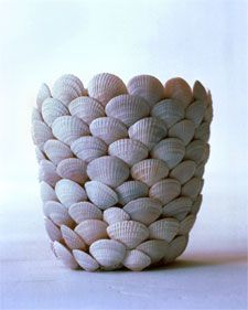 shell flower pot