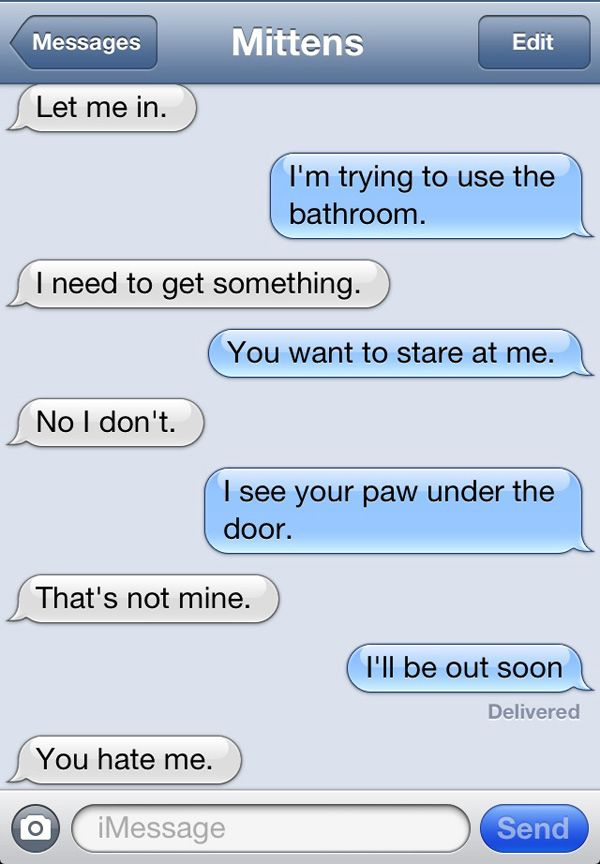 Text Messages from Mittens the Cat- Rizzo does this to me all the time.