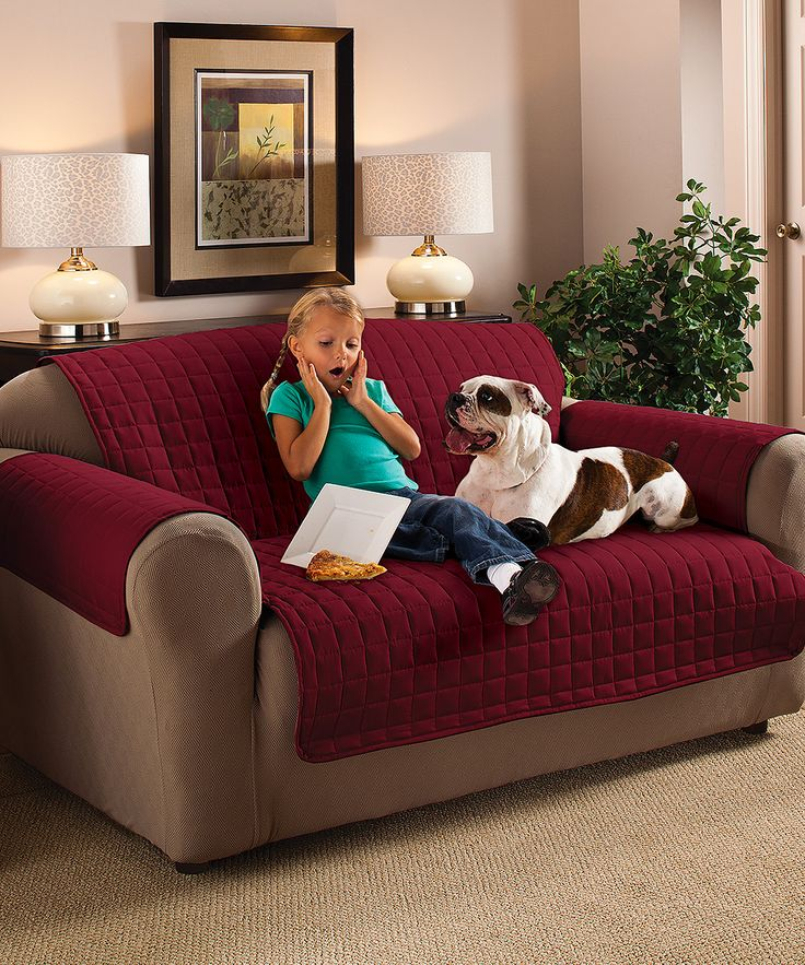Best 25 Pet couch cover ideas on Pinterest Pet sofa cover