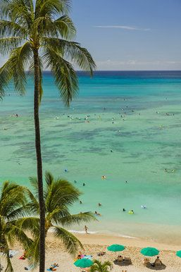 The view can't be beat in Waikiki.