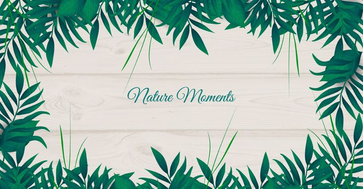How to Create Nature Background in Adobe Illustrator