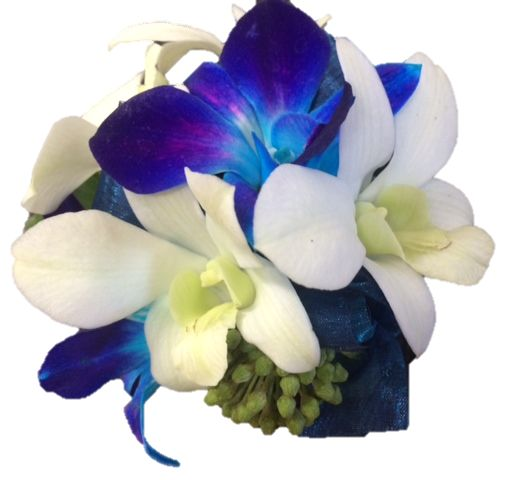 Blue & white orchid wrist corsage - small