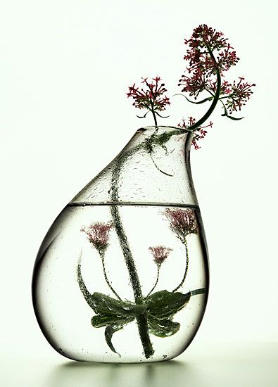 What a beautiful vase! Would love to fill it with tall, graceful herbs.