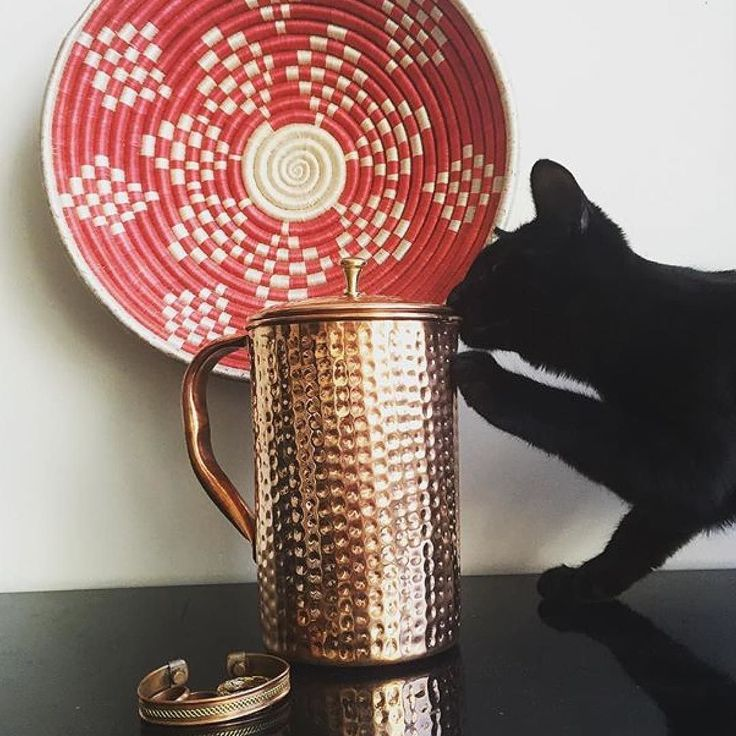 Cats are fans of our copper pitchers too! Thanks to @mushakka for this great photo of his copper pitcher and cute cat!   #ayurvedic #ayurveda #holistic #holistichealth #holisticnutrition #holistichealing #holisticliving #holisticlife #holisticbeauty #holisticlifestyle #holisticwellness #holisticmedicine #cleanse #healthandwellness #hydration #yogalife #detox #detoxwater #detoxify #alkaline #alkalinewater #ayurvedicmedicine #yogaholic #waterislife #drinkwater #drinkmorewater #drinkwataah #h2o #hy