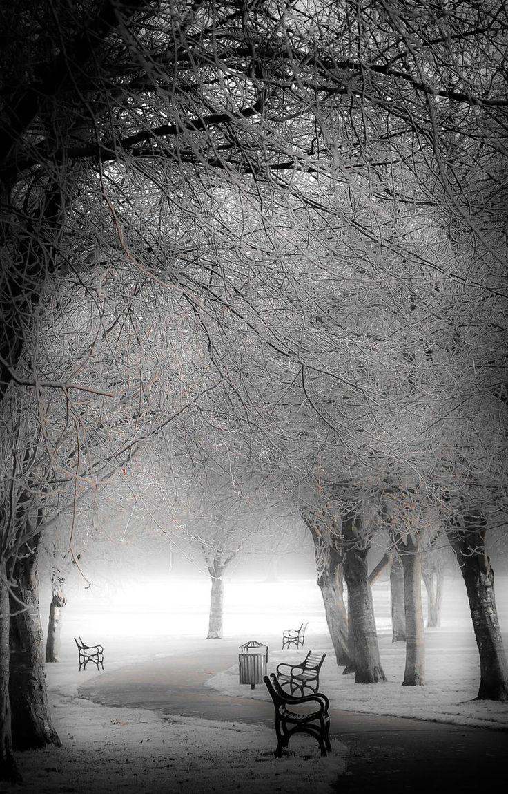 London Park Frosting ~ England