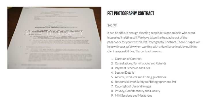 Professional Photography Contract  Photography Contract  EasyTo