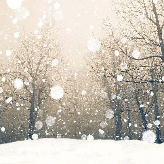 schneebedeckt   – Christmas…