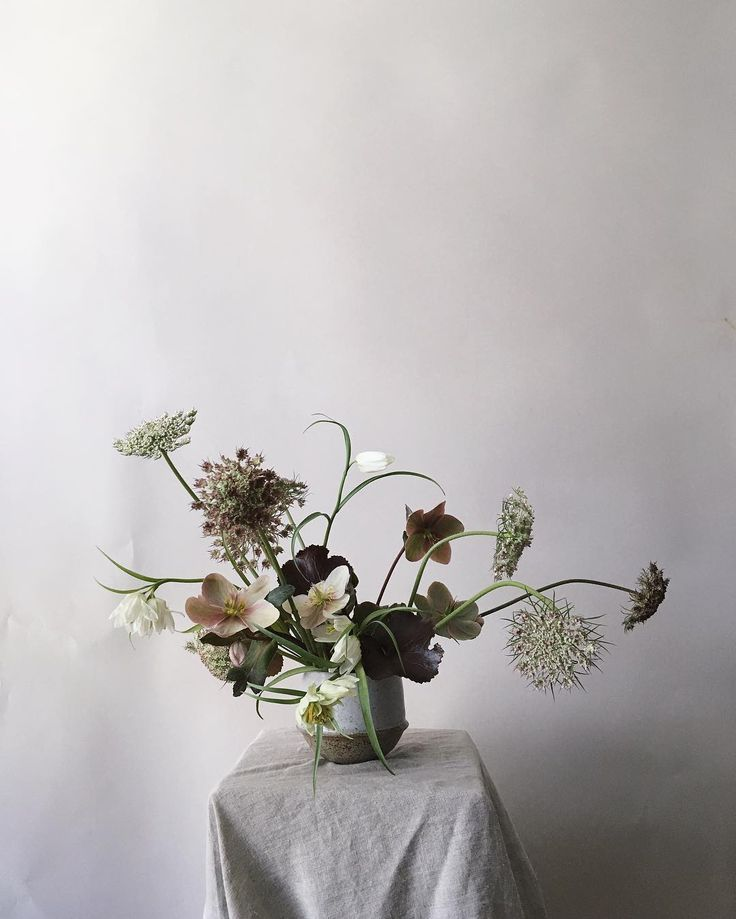 photo composition & styling. Arrangement: queen anne's lace, hellebore, 'black' begonia' leaf, etc.  | by @studiomondine