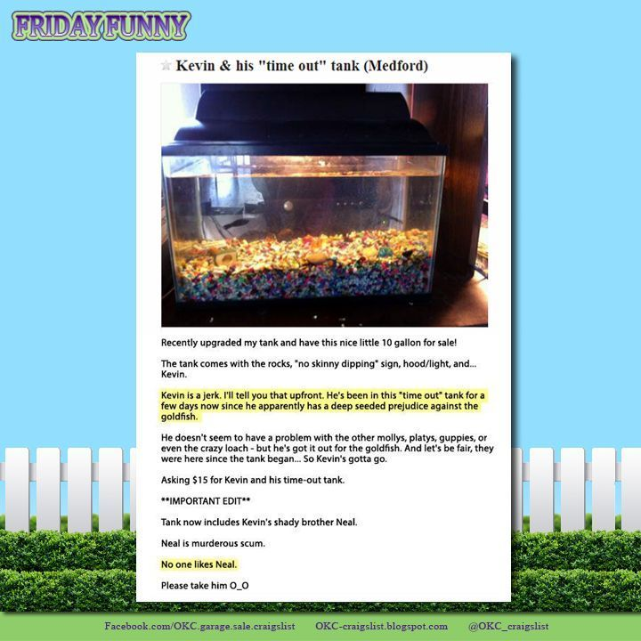 Funny Craigslist Ads Naughty Fish And His Time Out Tank For Sale On Craigslist Funny Craigslist Ads Time Out Friday Humor