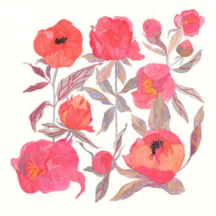 nadezdafavaillustration: Nadezda Fava | Bloom tattoo???