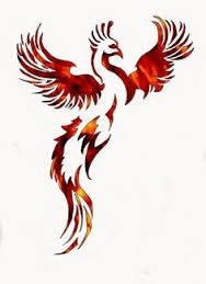 Image result for phoenix feather