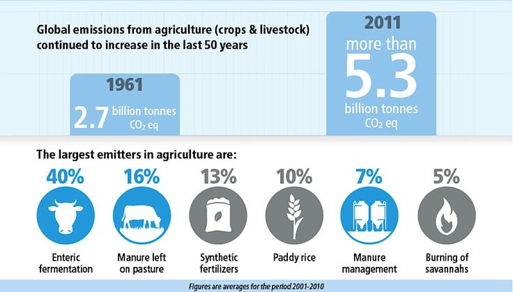 Global Farm Animal Production and Global Warming: Impacting and Mitigating Climate Change