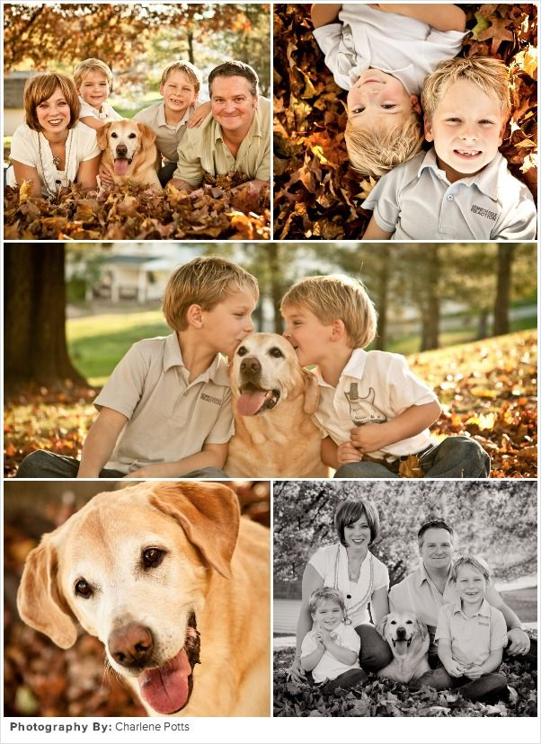 Fall Family Picture Ideas: Aww, I want to buy Mac a sweater and include him in our photos this year!