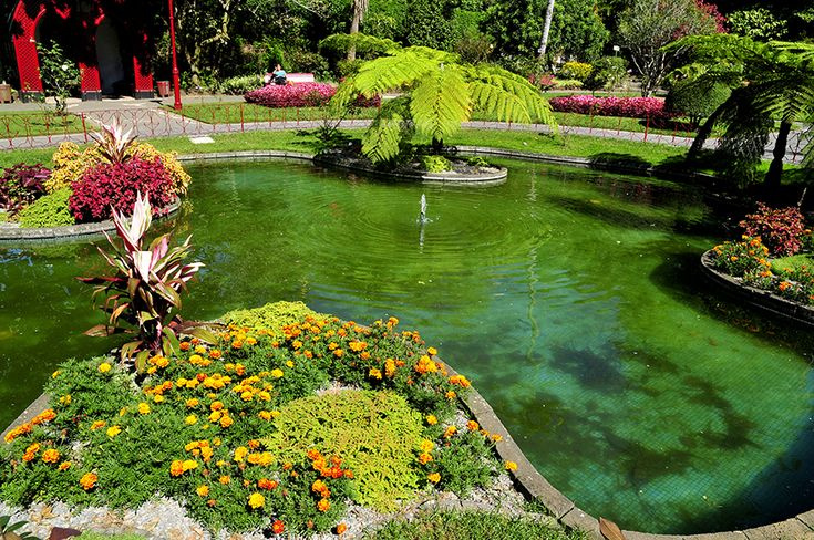 Em que ilha fica este belíssimo jardim? // In which island can you find this beautiful garden?