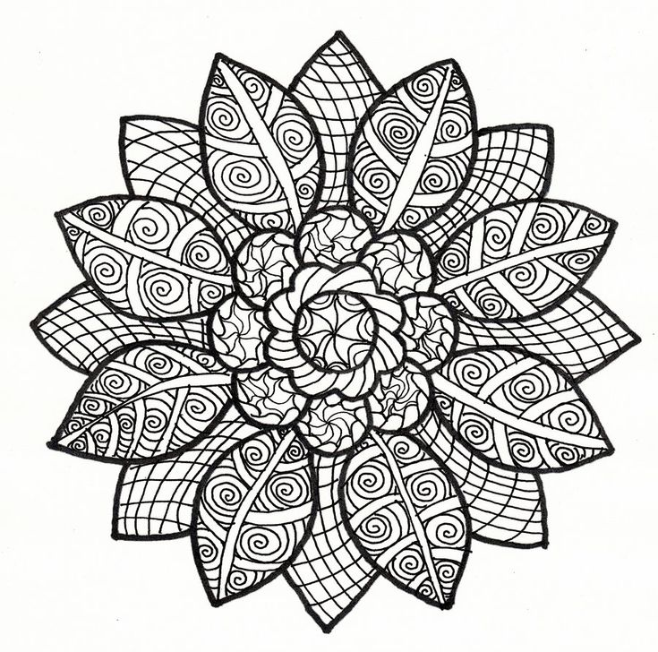 Coloring Pages Of Flowers For Free : 729 best coloring pages images on pinterest