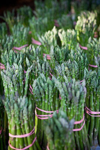 Asparagus | Flickr: Intercambio de fotos
