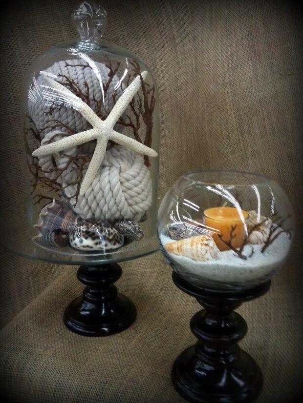 Sea Shells in a Glass Cloche