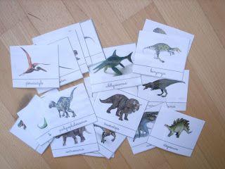 Les Montessouris: Les dinosaures nomenclatures cartes