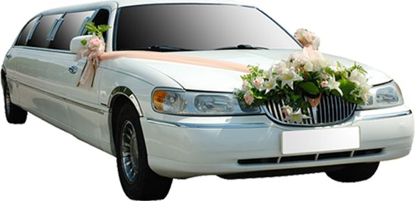 For those who want to avail wedding limo hire services in Sydney, there are all kinds of luxury cars available all over the city. You simply need to call or contact a wedding limousines Sydney based companies. Wedding Hire cars in Sydney come in all customized choices, perfect for your unique theme based marriage.http://www.hillscorporatecars.com.au/services.aspx