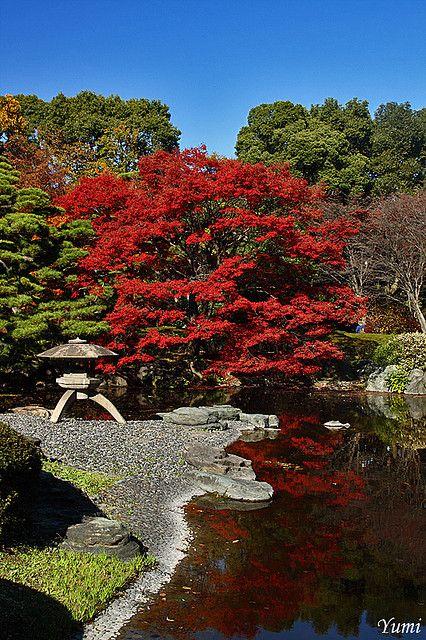 mini jardins orientais: sobre Jardins Japoneses no Pinterest