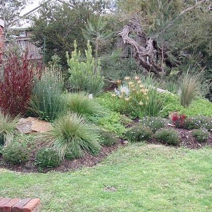 Native Rock Gardens Australia Google Search Backyard