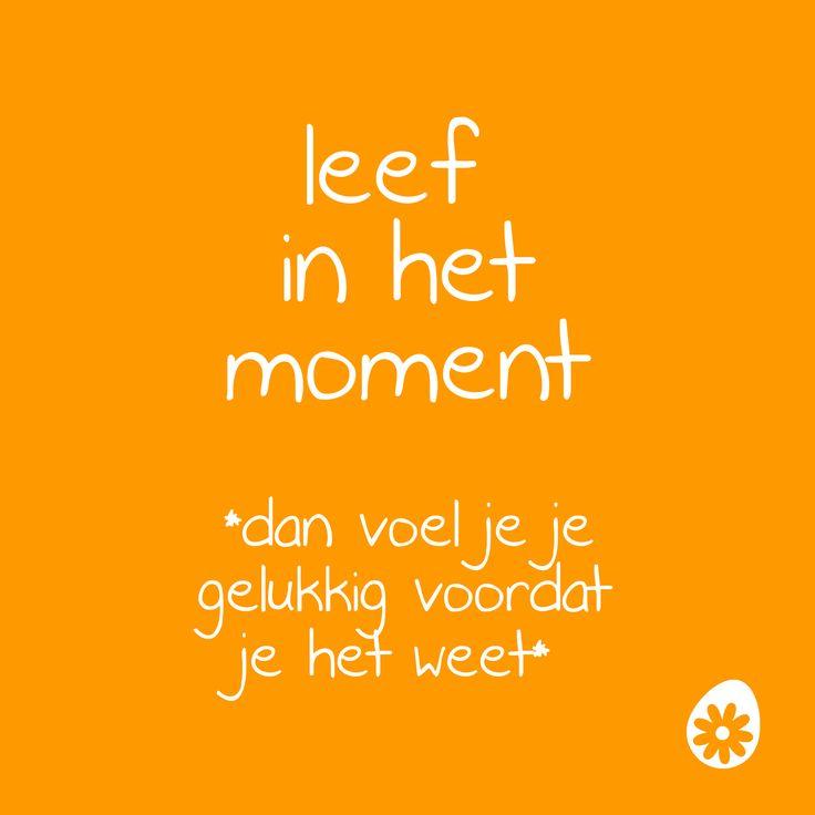 Leef in het moment. *dan voel je je gelukkig voordat je het weet*