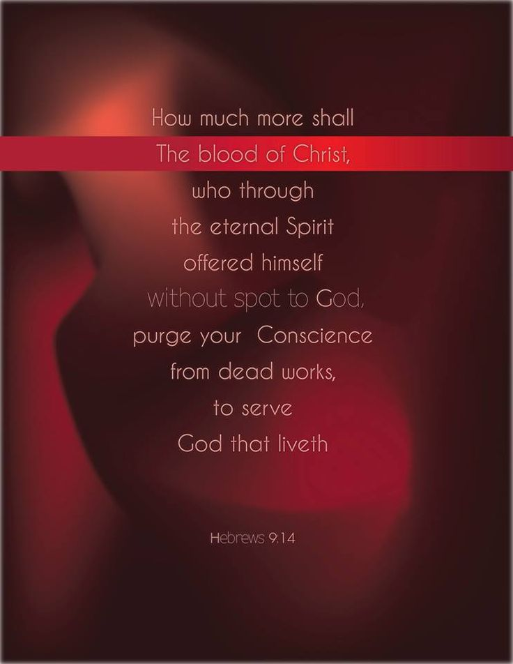 Hebrews 9:14 Just think how much more the blood of Christ will purify our consciences from sinful deeds[f] so that we can worship the living God. For by the power of the eternal Spirit, Christ offered himself to God as a perfect sacrifice for our sins.