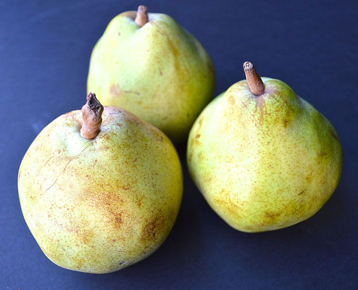 Superfood Spotlight: Pears are anti-inflammatory, making them a great post-workout snack to ease your hard-working muscles. And since just one pear offers about 25% of your daily recommended fiber as well, you can slice up your favorite variety to aid digestion without worrying about inflaming your sensitive system. Pears also contains potentially anti-cancer phytonutrients, like cinnamic acid, to guard against carcinogens and keep you disease-free in the long run.