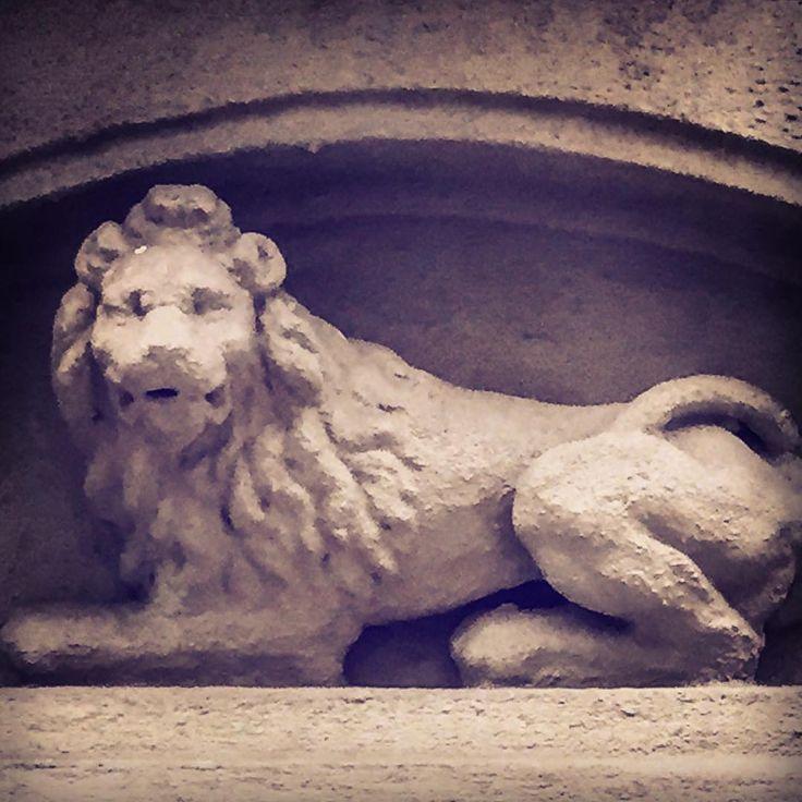 Lion, East 83rd Street #architecture #architecturephotography #architecturelovers #architettura #arquitectura #arquitetura #arkitektur #arkitektura #mimari #uppereastside #manhattan #nyc #luxuryrealestate #townhouse #lion #cat #leone #gatto #leon #chat #gato #katze #löwe #kedi #aslan http://turkrazzi.com/ipost/1521432092738510994/?code=BUdNm1tjuCS