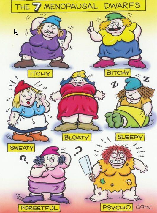 Klachten in de menopauze meer dan alleen maar opvliegers