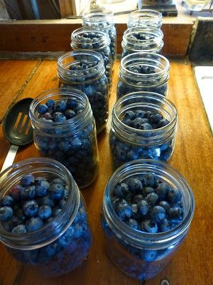 Rural Revolution: Canning blueberries