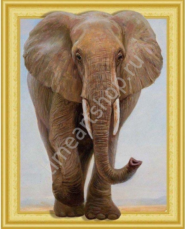 Африканский слон, картина раскраска по номерам, на ...