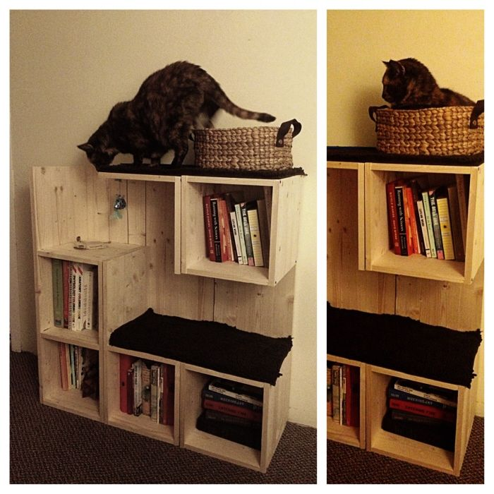 Diy Pinspiration No Instructions But This Bookshelf And Cat Tree Concept Is Awesome And Looks Pretty Simple To Make Diy Cat Projects Cats