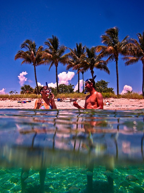 Snorkeling Peanut Island