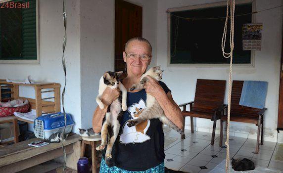 Idosa cuida de mais de 50 gatos abandonados em Vilhena