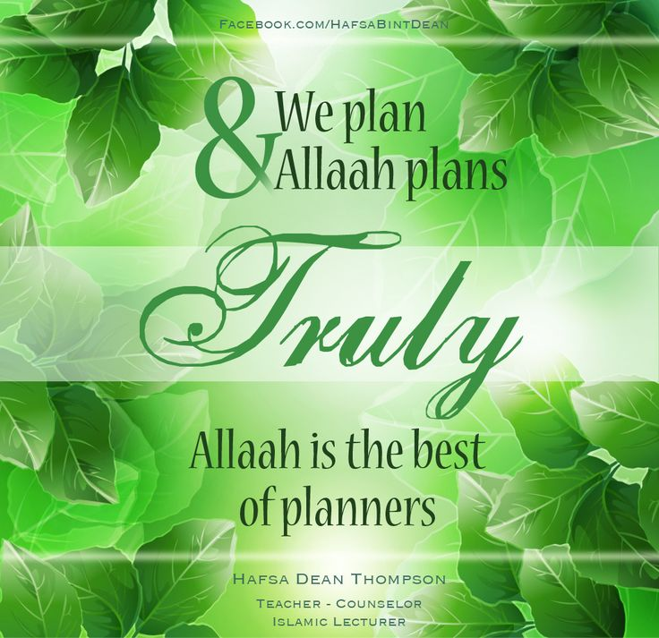 The Best of Planners