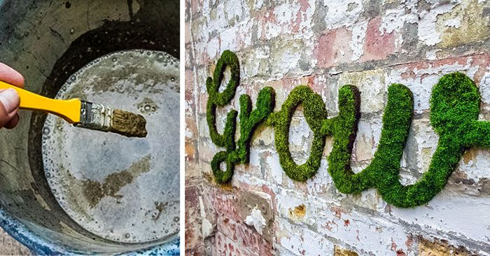 Como Hacer Un Preparado Para Pintar y Graffitear En Las Paredes Con Musgo