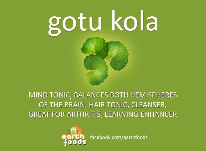 how to use gotu kola for skin